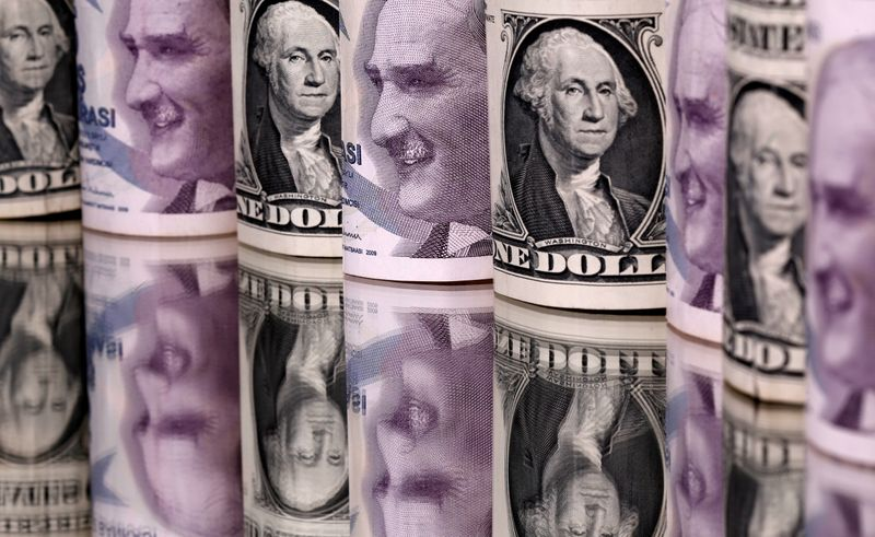Turkish lira falls to record low against U.S. dollar